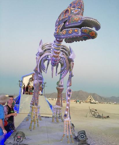 burning man fest 027
